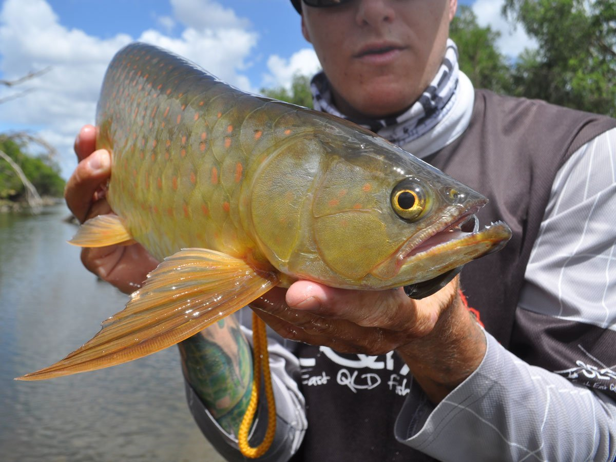 Saratoga-kayak-fishing-tips-3