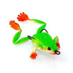 Bobbin Frog Tree Frog