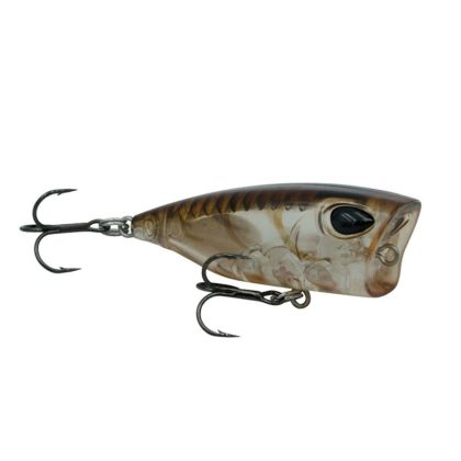 Storm Gomoku Popper Fishing Lure BTP