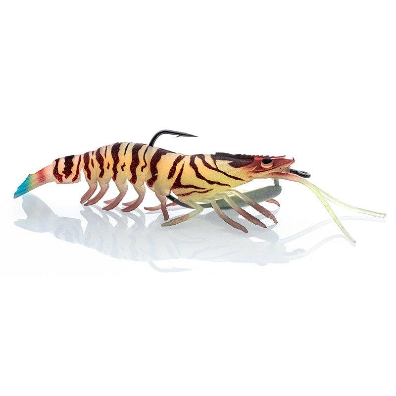 Tiger Prawn