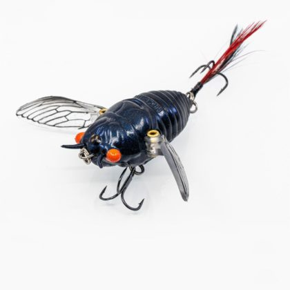 Chasebaits Ripple Cicada Hollow Body Soft Lure Red Eye