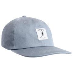 Desolve Fly Dad Hat